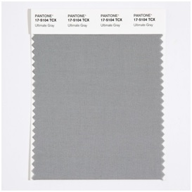 Pantone Colo Ultimate Gray