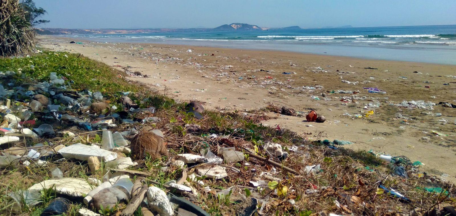 Plastic & marine pollution