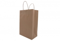 brown kraft paper bag - no printing