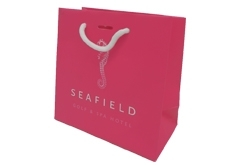 precision printing art paper bag with slits for hotel