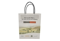 FSC certification kraft paper bag for gift