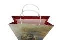 Museum art design shopping paper bag-4