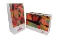 Luxury shopping series paper bag for art paper and white kraft