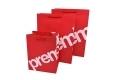 eco-friendly FSC paper bag-1
